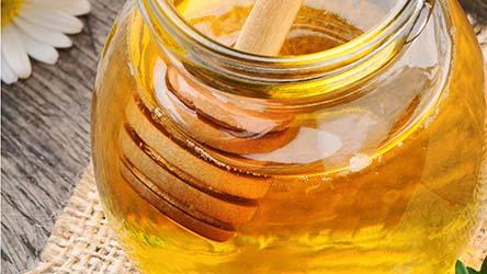 Le miel de Touraine